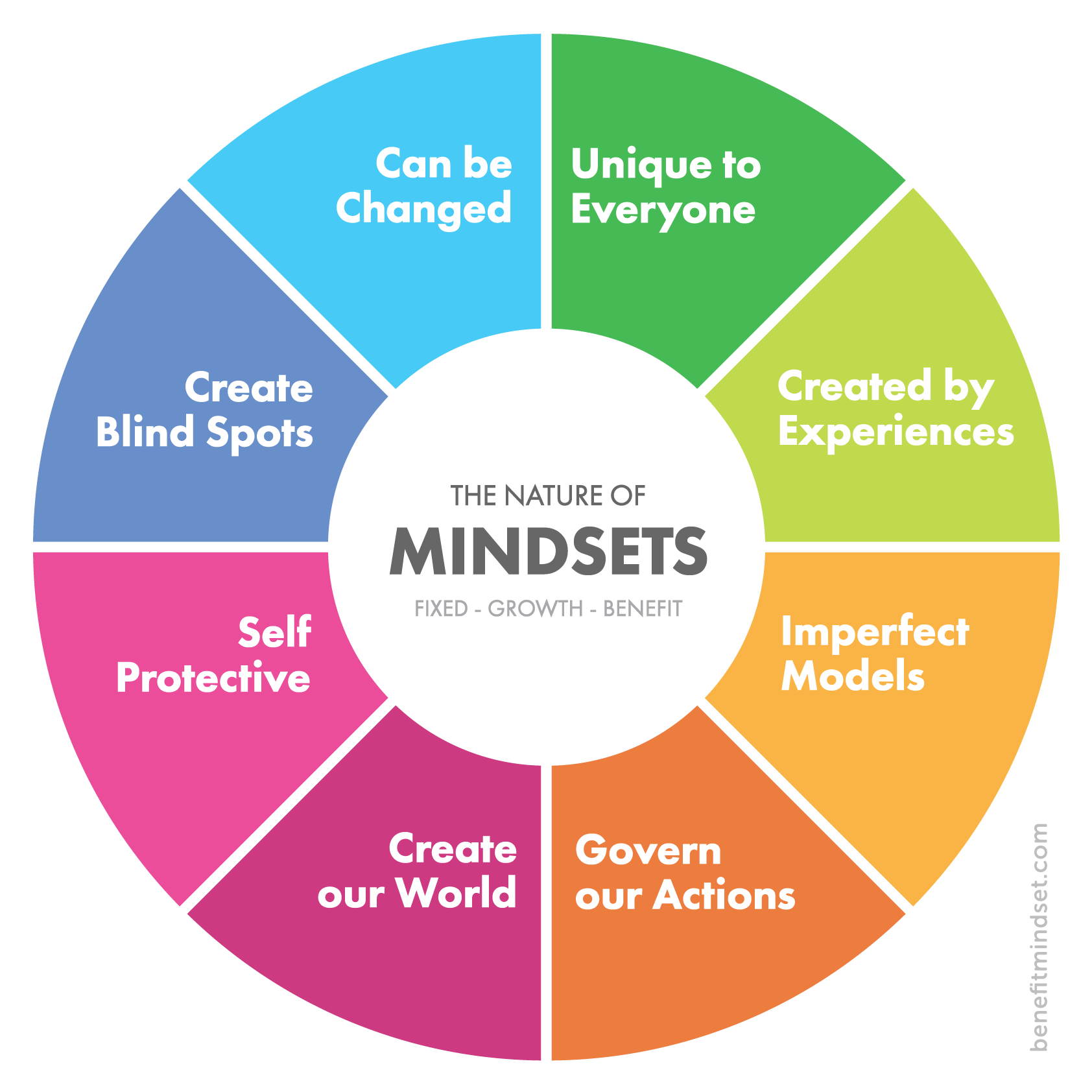 The nature of mindsets